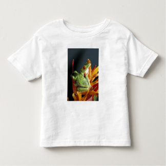 South America. Red-eyed tree frog Agalycmis Toddler T-Shirt