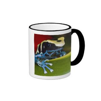 South America, Republic of Surinam. Close-up Ringer Coffee Mug