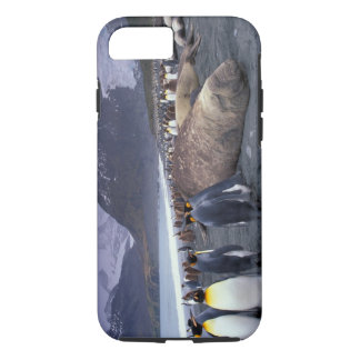 South America, South Georgia Island, Elephant iPhone 8/7 Case