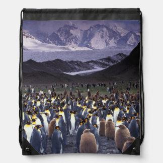 South America, South Georgia Island, King Drawstring Backpacks