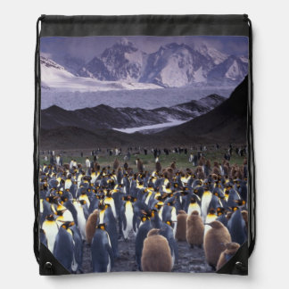 South America, South Georgia Island, King Drawstring Bag