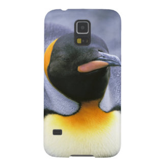 South America, South Georgia Island. King Galaxy S5 Case