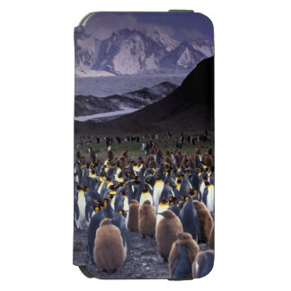 South America, South Georgia Island, King Incipio Watson™ iPhone 6 Wallet Case