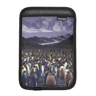 South America, South Georgia Island, King iPad Mini Sleeve