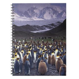 South America, South Georgia Island, King Spiral Notebook