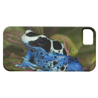 South America, Surinam. Close-up of Patricia Case For The iPhone 5
