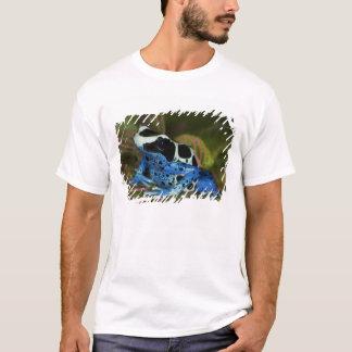 South America, Surinam. Close-up of Patricia T-Shirt