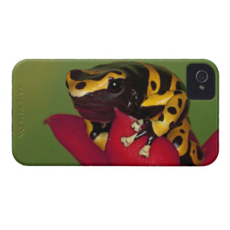 South America, Venezuela. Close-up of iPhone 4 Case-Mate Case