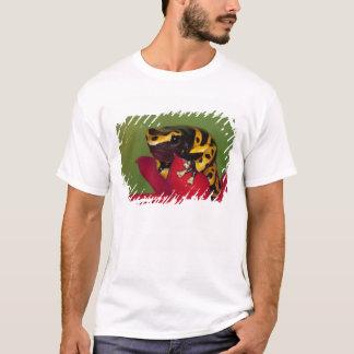 South America, Venezuela. Close-up of T-Shirt