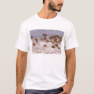 South America, Venezuela, Llano region. T-Shirt