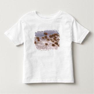 South America, Venezuela, Llano region. Toddler T-Shirt