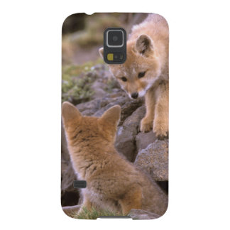 South American Gray Fox (Lycalopex griseus) pair Case For Galaxy S5