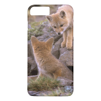 South American Gray Fox (Lycalopex griseus) pair iPhone 8 Plus/7 Plus Case