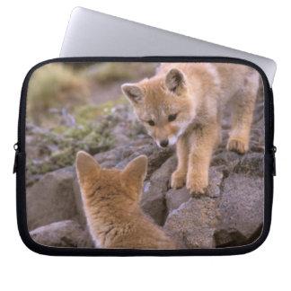 South American Gray Fox (Lycalopex griseus) pair Laptop Sleeve