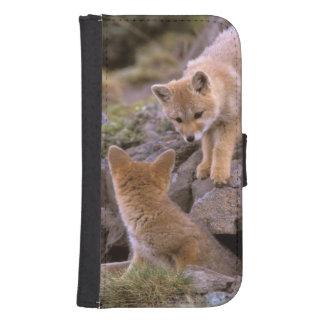 South American Gray Fox (Lycalopex griseus) pair Samsung S4 Wallet Case