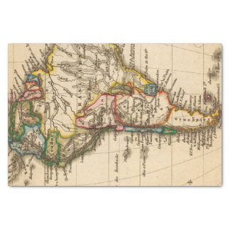 South American Map Tissue Paper