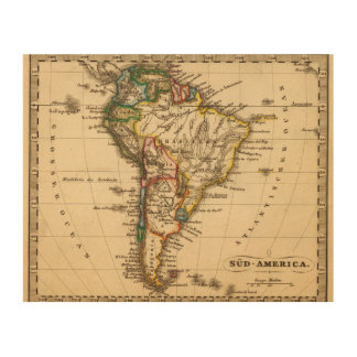South American Map Wood Wall Art