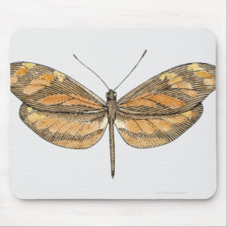 South American Tiger Mouse Pad