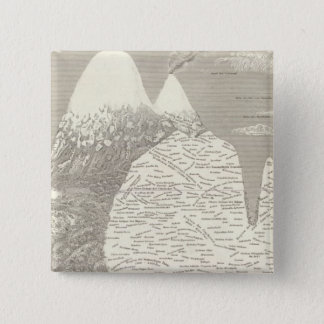 South American Vegetation 15 Cm Square Badge