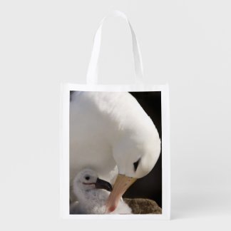 South Atlantic, Falkland Islands, New Island. Reusable Grocery Bag