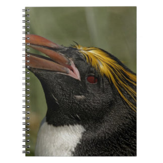 South Atlantic Ocean, South Georgia Island, 2 Spiral Notebook