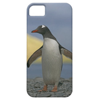 South Atlantic Ocean, South Georgia Island, Barely There iPhone 5 Case
