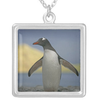 South Atlantic Ocean, South Georgia Island, Silver Plated Necklace