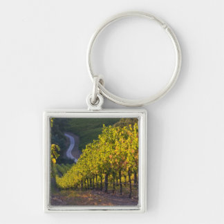 South Australia, Adelaide Hills, Summertown. 2 Silver-Colored Square Key Ring