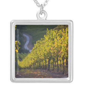 South Australia, Adelaide Hills, Summertown. 2 Silver Plated Necklace