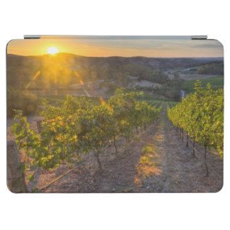 South Australia, Adelaide Hills, Summertown. iPad Air Cover