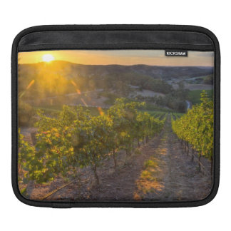 South Australia, Adelaide Hills, Summertown. iPad Sleeve