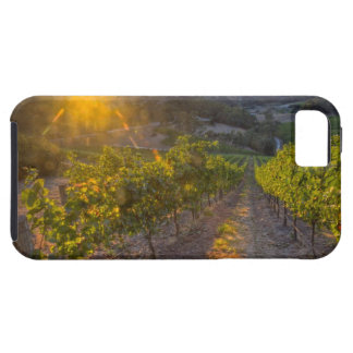 South Australia, Adelaide Hills, Summertown. iPhone 5 Cover