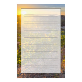 South Australia, Adelaide Hills, Summertown. Stationery