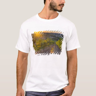 South Australia, Adelaide Hills, Summertown. T-Shirt