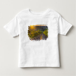 South Australia, Adelaide Hills, Summertown. Toddler T-Shirt