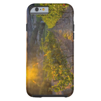 South Australia, Adelaide Hills, Summertown. Tough iPhone 6 Case