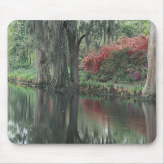 South Carolina, Charleston Mouse Mat