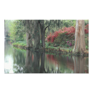 South Carolina, Charleston Photo Print