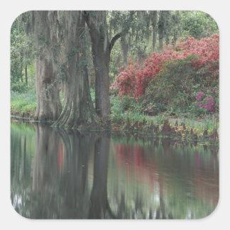 South Carolina, Charleston Square Sticker