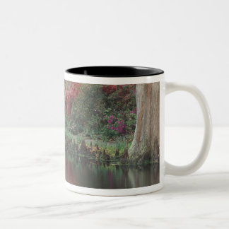 South Carolina, Charleston Two-Tone Coffee Mug
