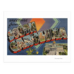 South Carolina (State Capital/Flower) Postcard