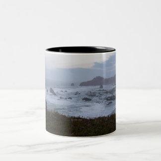 south coastal Oregon   cup  1 Mug