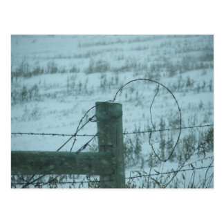 South Dakota Snowstorm Postcard