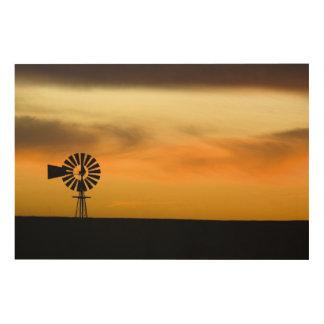 South Dakota, USA. Wood Print