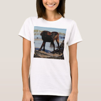 South Devon Beach Dartmoor Pony Biteing Tale T-Shirt