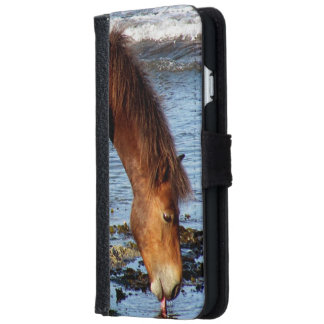 South Devon Beach Dartmoor Pony Licking Blue Sea iPhone 6 Wallet Case