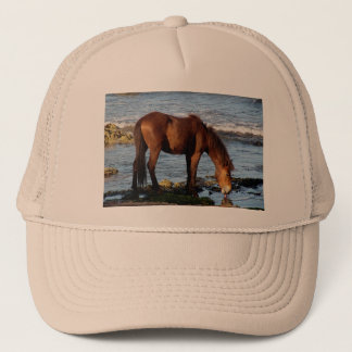 South Devon Beach Dartmoor Pony Licking Sea Water Trucker Hat