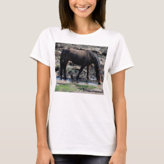 South Devon Beach Wet Looking Dartmoor Pony T-Shirt