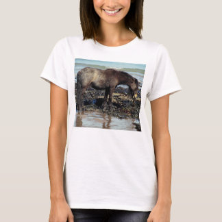 South Devon Beaqch Dartmoor Pony Enjoying Seaweed T-Shirt