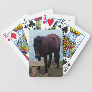 South Devon Coast Dartmoor Pony At Bench Bicycle Playing Cards